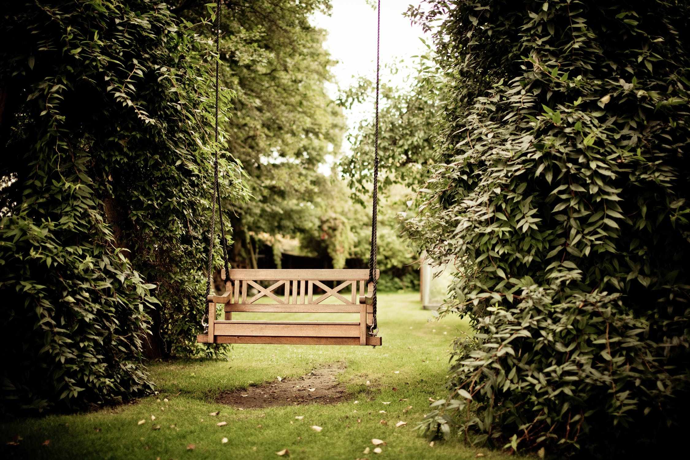 Not Enough Space for a Garden? Bring the Outside In! Quick Self Storage